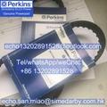 541/398 原裝正品perkins珀金斯發動機風扇皮帶充電機皮帶T80109105 1