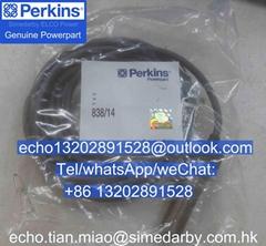 原裝正品Perkins珀金斯帕金斯4000發動機配件速度傳感器838/14