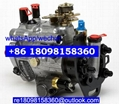 2644H032 2644H605 T423361 Perkins Fule injection pump for 3054