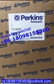 T419939 Perkins oil pump for 1106C-70TA 1106A-70TA CAT Caterpillar C7.1