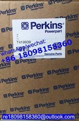 原装正品Perkins珀金斯帕金斯1100机油泵T419939卡特CATc4.4 C6.6 C7.1