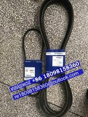 CH11950 CH11202 CH11037/CH11186原裝正品Perkins珀金斯發動機零配件充電機皮帶風扇皮帶