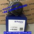 原装正品Perkins珀金斯帕金斯1100机油泵4132F072 4132F071卡特CAT C4.4 2