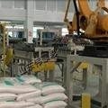國產化肥智能卸垛機器人