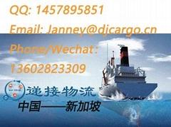 从中国广州海运一批鞋子到新加坡散货整柜拼箱