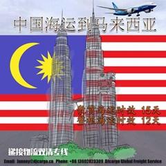 中國海運到馬來西亞雙清關送貨上門一站式服務
