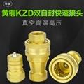 黃銅KZD1-4真空高溫高壓內