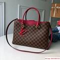 Riverside Damier Ebene canvas handbags