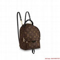 palm springs backpack mini monogram    mini women backpack    nonogrbackpack (Hot Product - 1*)
