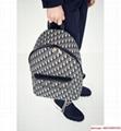 Hotsale      oblique backpack