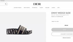 Dior DWAY WEDGE SLIDE Blue Dior Oblique Embroidered Cotton dior slide