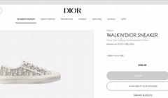 WALK'N'DIOR SNEAKER Gray Dior Oblique Embroidered Cotton Dior sneaker dior shoes