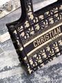 MINI DIOR BOOK TOTE Blue Dior Oblique Embroidery DIOR mini tote bags