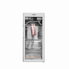 FIRENACE 熱賣西餐廳廚房設備 干式熟成櫃干式熟成櫃 牛肉排酸櫃