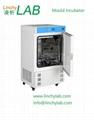 Mould incubator lab mould incubator