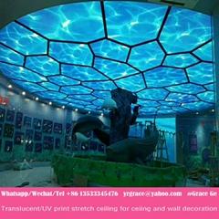 lack matt glossy translucent uv print pvc stretch ceiling film