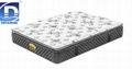5 zone pocket spring memory foam