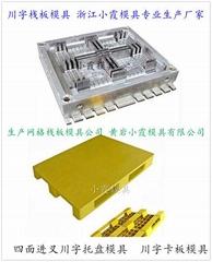 货架塑料地板模具精品高端模具