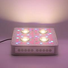 New best 300w led grow light crees COB with 3w chip 360W cob led grow light