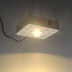 Full spectrum cxb3590 + 5w led grow light 200w plant led light for medical plant
