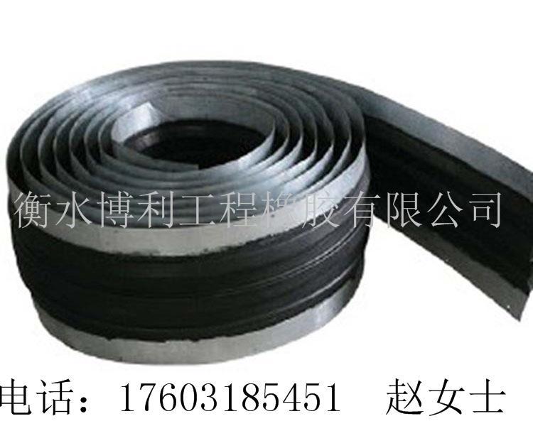 供應鋼邊式橡膠止水帶 1