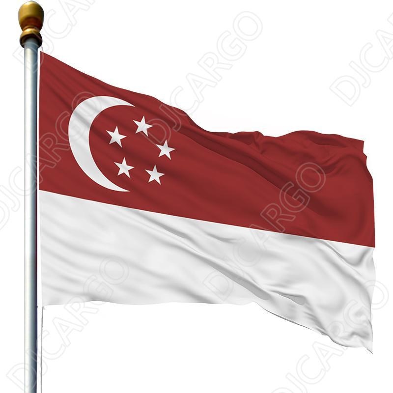 广州海运货架摆设架到新加坡的双清到门服务 2
