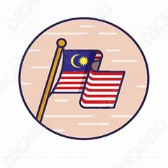 深圳运输家用电器到马来西亚海运拼箱门到门
