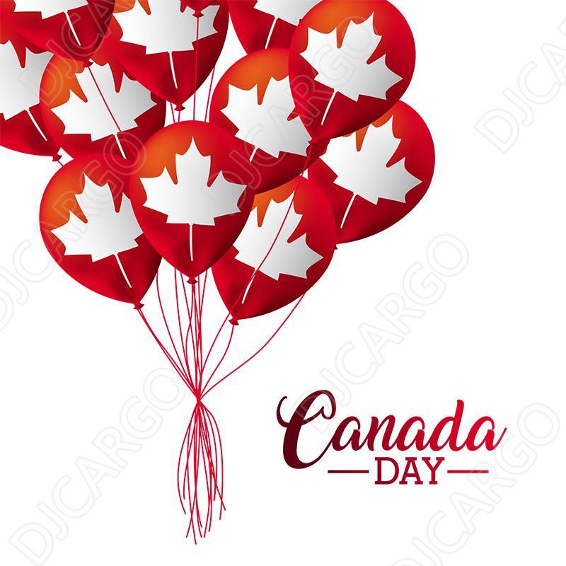 中国海运货物到加拿大 5