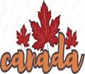 中国散货运输到加拿大到门包办双清 3