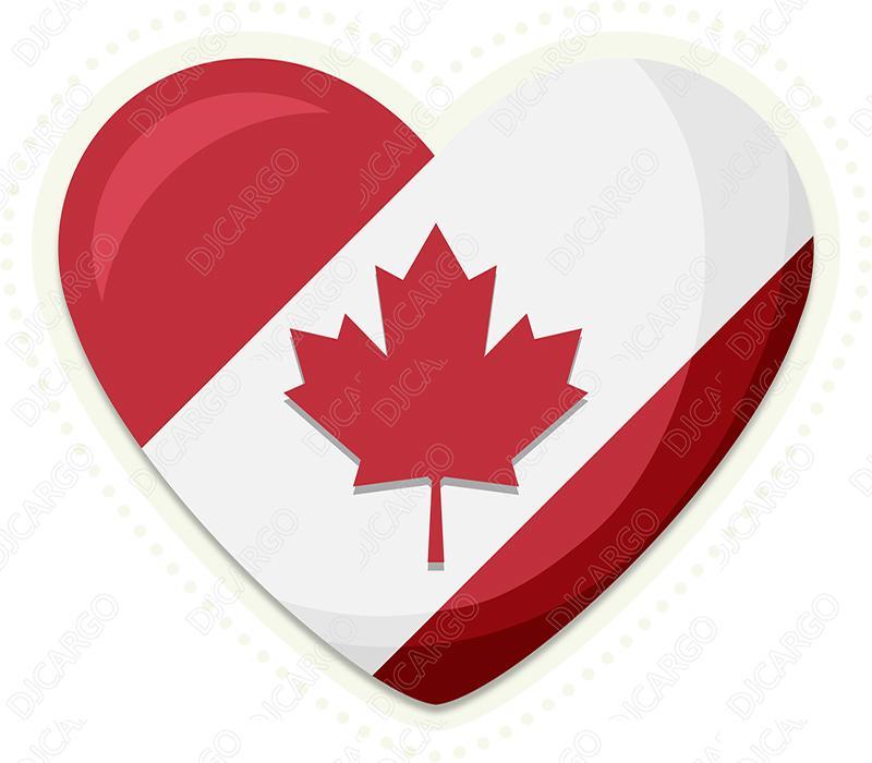 中国散货运输到加拿大到门包办双清 4