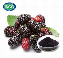 Mulberry Fruit Extract