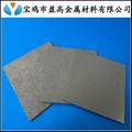 金属微孔膜滤片