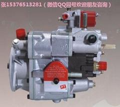 K1039-M300發動機PT燃油泵總成3165223