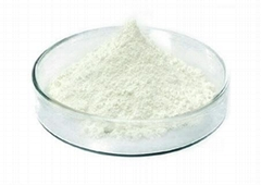 導電氧化鋅粉體