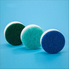 cleaning sponge for shoe