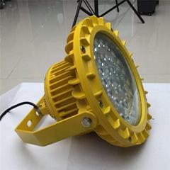 BPC8766定制瓦数LED防爆灯