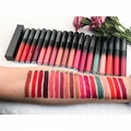 Private Label Matte Longlasting Lipstick Multicolor Manufacturers with Your Own  4