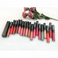 Private Label Matte Longlasting Lipstick Multicolor Manufacturers with Your Own  5