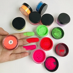 Hot 10 Colors Loose Single Glitter Powder Eye Shadow Neon Pigment Eyeshadow