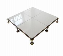 立品 陶瓷防靜電地板