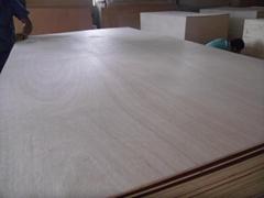 廠家批發桃花芯傢具板桉木傢具板可定製全國直銷