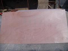 廠家18mm優質楊木芯傢具板環保膠合板