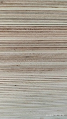 漂白楊木傢具板超平楊桉漂白傢具板