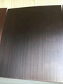 不鏽鋼鍍銅板,不鏽鋼納米色油板,不鏽鋼高檔裝修板 4