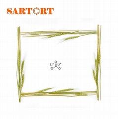 Lithium carbonate 209-062-5 www-sartort-com