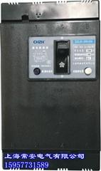 DZL25-250/4300塑壳漏电断路器