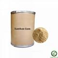 Xanthan Gum 1