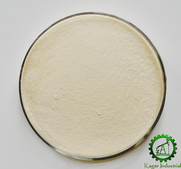 Xanthan Gum 2
