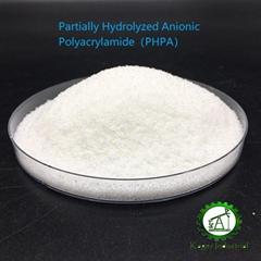 partially-hydrolyzed polyacrylamide PHPA