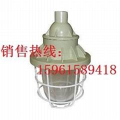 HRD72防爆金卤灯